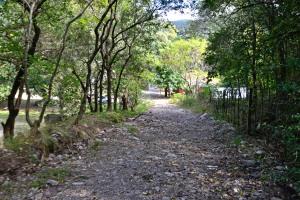Transitar por las calles de Parque Guerrero representa un peligro para los peatones, y una imposibilidad para los vehículos.
