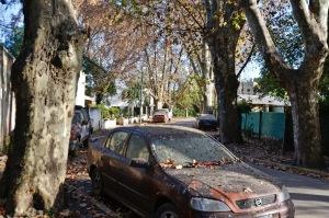 Vecinos denuncian la obstrucción de tránsito en la calle Río Negro debido a los autos confiscados por la policía.
