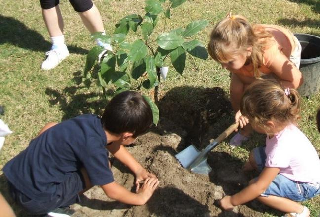 Uno de los ejes de aprendizaje serán el manejo de recursos naturales y la protección ambiental.